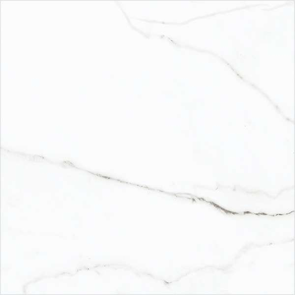 - 600 x 600 mm(24 x 24インチ) - elite-white
