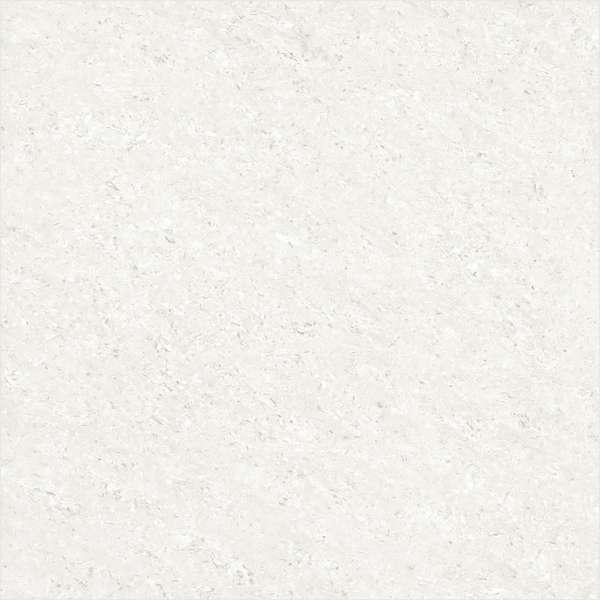- 600 x 600 mm(24 x 24インチ) - GALAXY SUPER WHITE ( L )